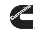 logos_cat-1.png